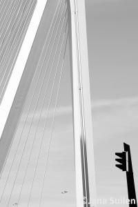 Rotterdam_2