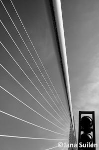 Rotterdam_3